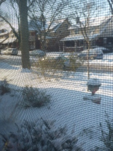 Windsor Snow Days