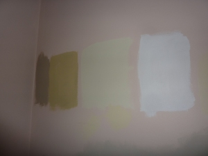 Selecting Colours for the Dining Room